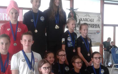 A megyebajnokságon úszóink